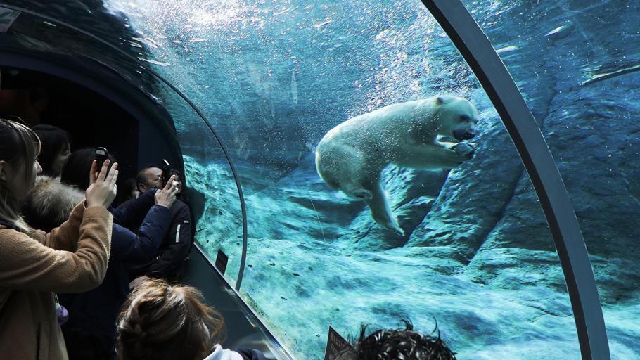 ひとりフォトウォーク・動物園